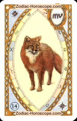 The fox, single love horoscope sagittarius