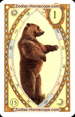 The bear, monthly Love and Health horoscope July Sagittarius