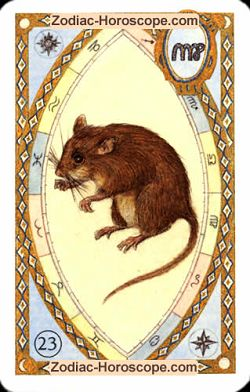The mice, monthly Love and Health horoscope June Sagittarius
